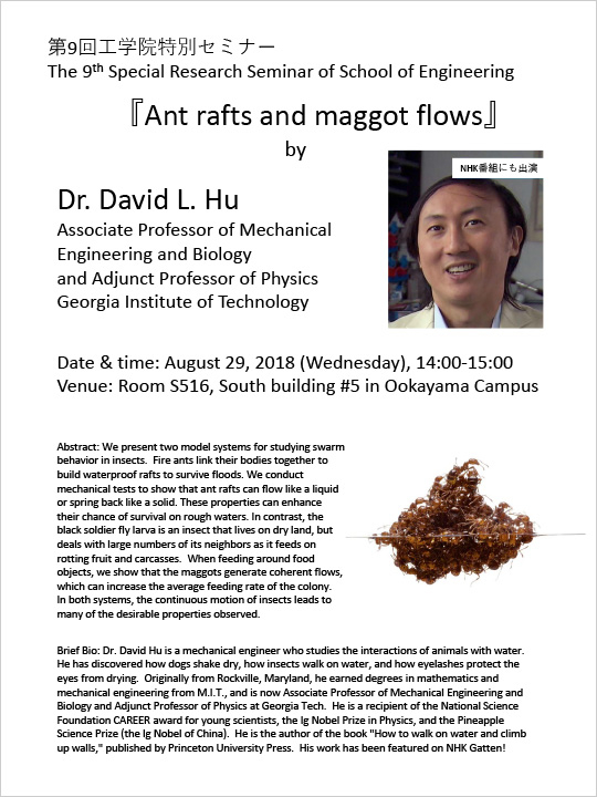 "9th Special Research Seminar of School of Engineering ""Ant rafts and maggot flows"" Flyer"