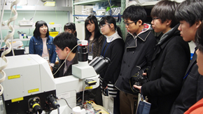 AGL students hold three-day camp for northeast Japan's high schoolers