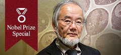 Special webpage for 2016 Nobel laureate in Physiology or Medicine