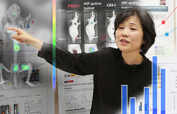 Shinae Kondoh - A determined quest toward new horizons in cancer treatment