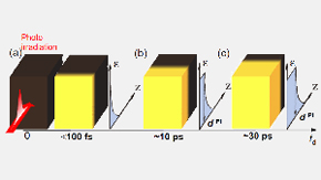 Photo-domino effect observed in a perovskite-type cobalt oxide