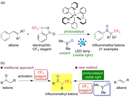 The results of the research (a): A comparison between the traditional approach and new method for oxidative trifluoromethylation of alkenes using photocatalysts (b)