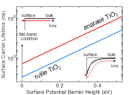This shows how the surface carrier lifetime of anatase and rutile TiO2 is affected by the surface potential barrier. The graph above, where the line of anatase TiO2 is always higher than that of rutile TiO2, indicates that the carrier lifetime of the former is longer than that of the latter at the same magnitude of surface potential barrier.