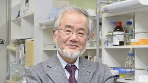 Honorary Professor Yoshinori Ohsumi Receives 2015 Canada Gairdner International Award