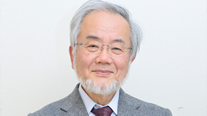 Honorary Professor Yoshinori Ohsumi selected as 2015 Person of Cultural Merit