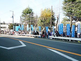 Tokyo Tech's blue banners line a street in the 8th section