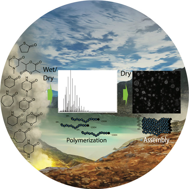 Polymers and cell-like structures made from primitive non-biological compounds