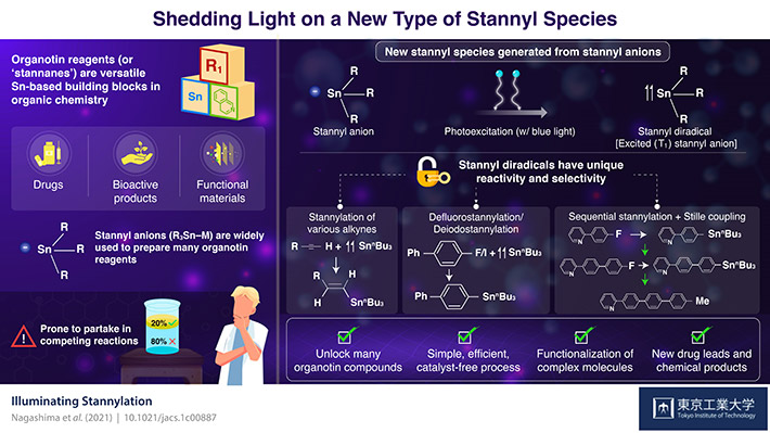 Shedding Light on a New Type of Stannyl Species
