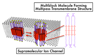 Figure 2: Supramolecular ion channel mimicking membrane proteins