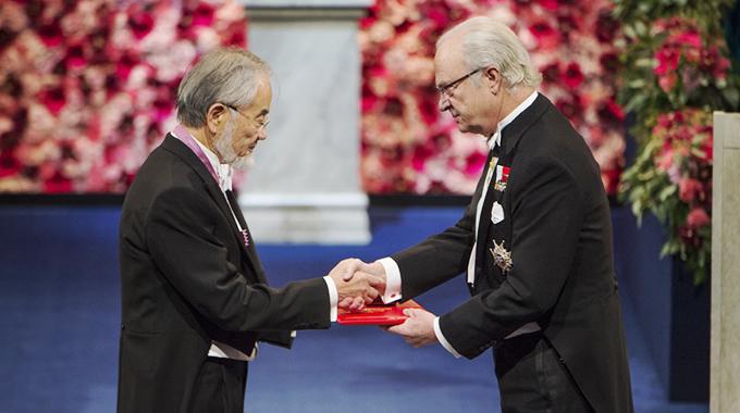 Ohsumi receiving medal and diploma from King Carl XVI Gustaf of Sweden © Nobel Media AB 2016. Photo: Pi Frisk