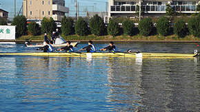 Tokyo Tech rowers eighth at 58th All Japan Rookie Championships