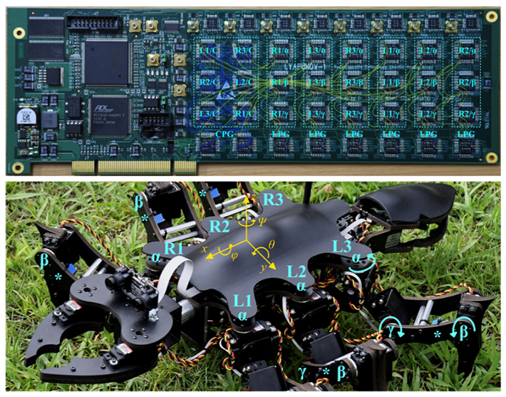 Figure 1. Views of the circuit board implementing the controller and of the robot (reproduced with permission from published article).