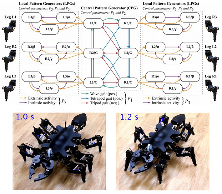 Representation of the controller and images of two robot postures © IEEE Access