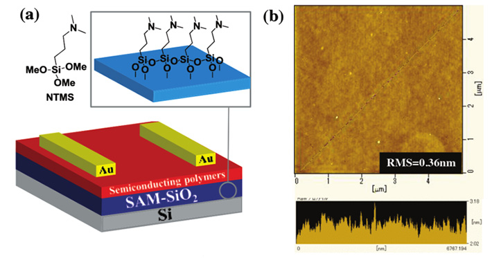 Figure 2. Layers of the thin-film transistors. (a) Structure of the thin-film transistors with the proposed SAM layer and polymers. (b) Atomic force microscopy image of the SAM layer, demonstrating its smoothness.
