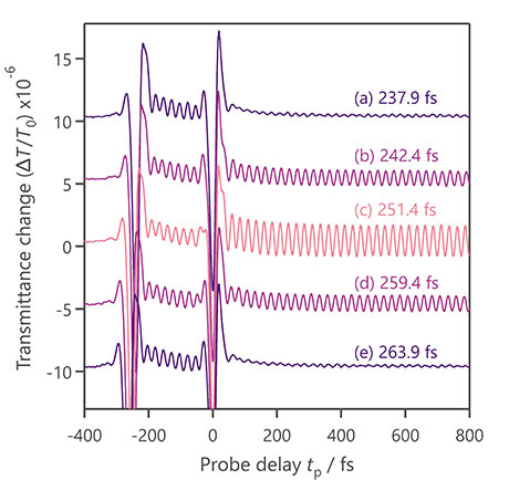 Amplitude control of phonon oscillation in diamond