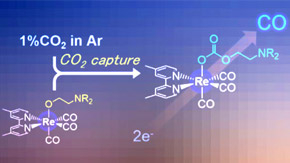 Scientists achieve direct electrocatalytic reduction of CO2, raising hopes for smart carbon capture