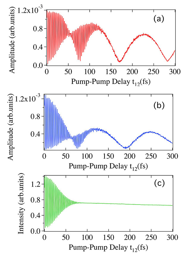 Figure 2. Interference fringes of optical phonons
