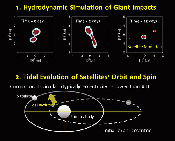 Formation of satellite(s) via a giant impact (top panels) and its orbital evolution via tidal interaction (bottom panel). Top panels show snapshots for the satellite-forming giant impact with about 1 km/s of the impact velocity and 75 degree of the impact angle. Bottom panel shows the schematic view for the circularization of the satellite's orbit due to tidal interaction after satellite formation. Credit: Arakawa et al. (2019) Nature Astronomy