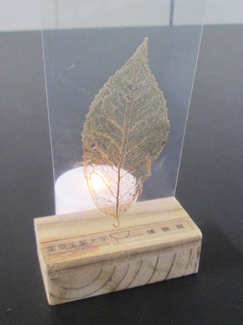 Leaf bookmark illuminated