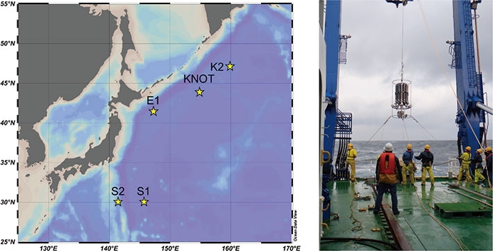 Map of study sites (stars) and picture of seawater sampling at subarctic station KNOT. Water sampler was casted in the sea from the research ship and seawater of active at 100-200 m depth, where microbial nitrification is active, was collected.