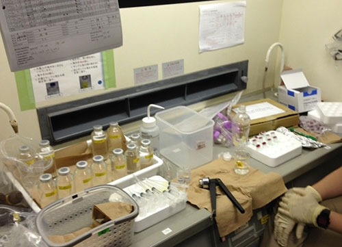 Picture of onboard seawater incubation experiment. 15N-labeled tracer was added to the water sample, and pH was decreased by addition of hydrochloric acid. The manipulated samples are kept in dark at the temperatures same as those at the sampling depth.