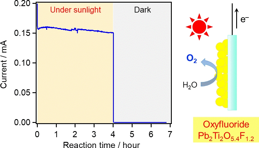 Performance of the proposed photoanode