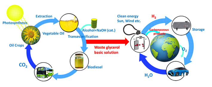 Figure 1. Sustainable biodiesel and hydrogen energy cycles