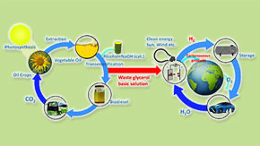 Towards sustainability —From a by-product of the biodiesel industry to a valuable chemical
