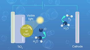 Catching Light: How Cobalt Can Help Utilize Visible Light to Power Hydrogen Production from Water