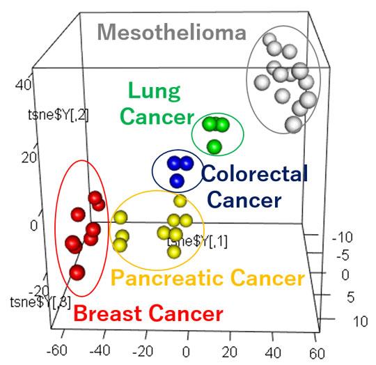 Figure 2. Tumor-Derived EVP Profiles Classify Primary Tumor of Origin