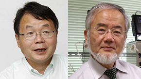 Professors Hideo Hosono and Yoshinori Ohsumi chosen as Thomson Reuters Citation Laureates