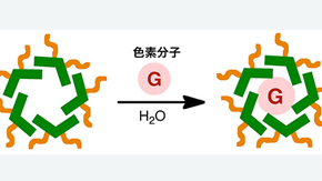 Researchers at Tokyo Institute of Technology produce new photoactive micelles with potential applications in photofunctional dyes and sensors.