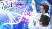 化学、物理、材料、情報にまでおよぶ研究にふれることができます。