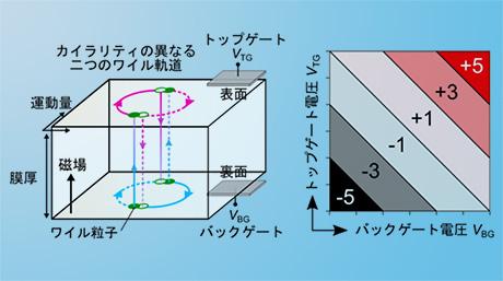 離れていてもつながった電子の軌道運動の実証
