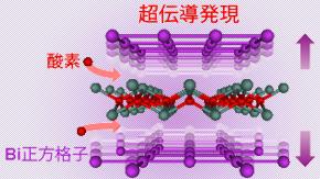 ビスマス単原子シートの超伝導体化に成功―新たな超伝導体発見手法として期待―