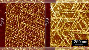 2次元ナノシート表面に
