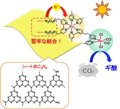新開発の光触媒でCO2を高効率に再資源化―緑色植物の光合成を人工系で実現―