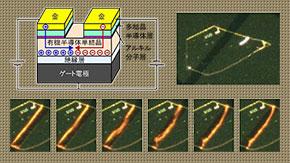 従来の性能を越える新しい有機半導体用電極の開発 ―電極材料によらず電子・正孔両方の注入が可能に