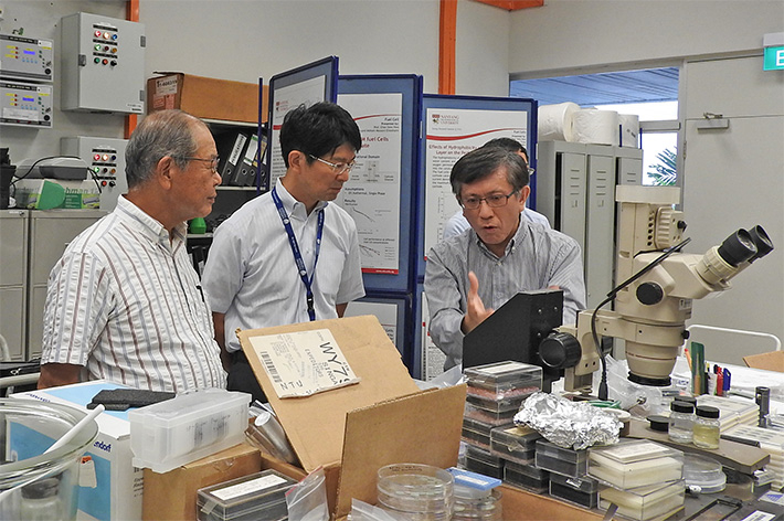 Tokyo Tech delegates and Professor Chan Siew Hwa (right), co-director of NTU's Energy Research Institute (ERI@N)