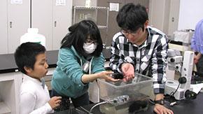科学教室「棘皮動物の不思議な世界2018」開催報告