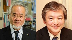 大隅良典栄誉教授、鈴木啓介教授が日本学士院会員に