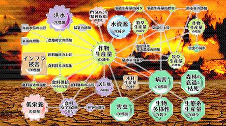 気候変動による影響の連鎖の可視化に成功