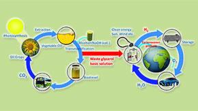 廃棄グリセロールからDHAと水素の生産に成功